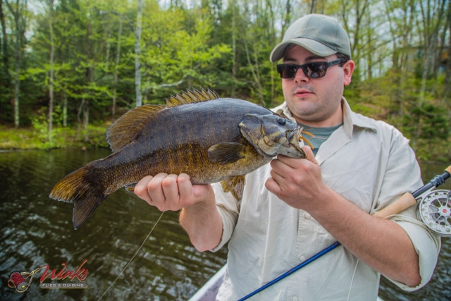 About Smallmouth Bass